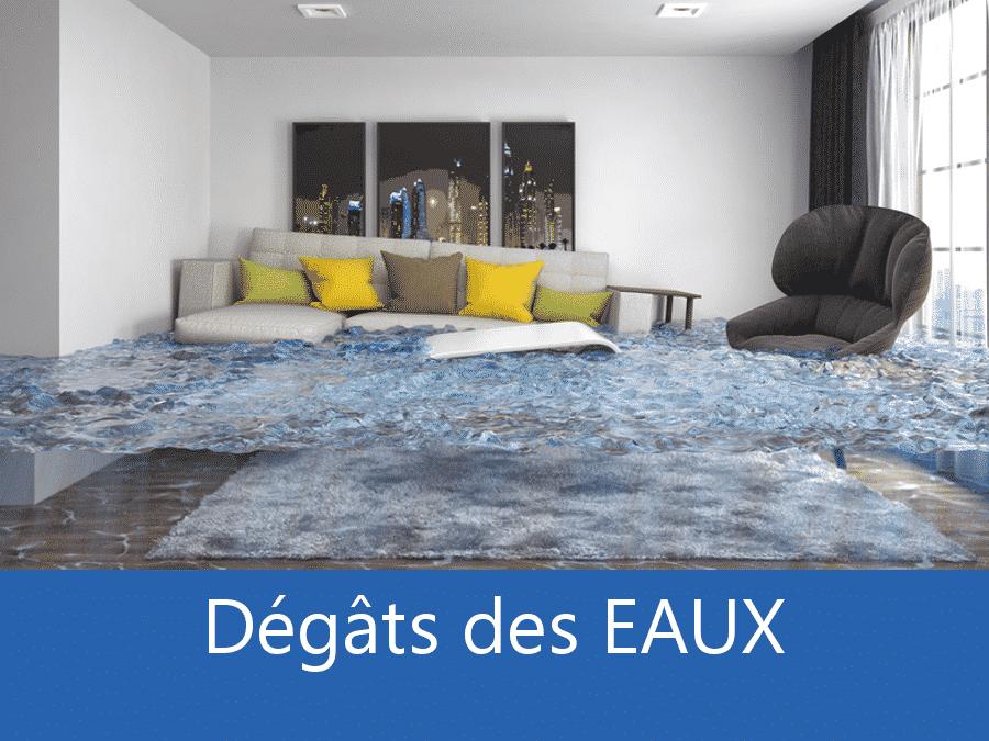 expertise humidité 37, expert humidité Tours, cause moisissure Tours, solutions hulidité Indre-et-Loire,